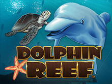 Dolphin Reef Слот